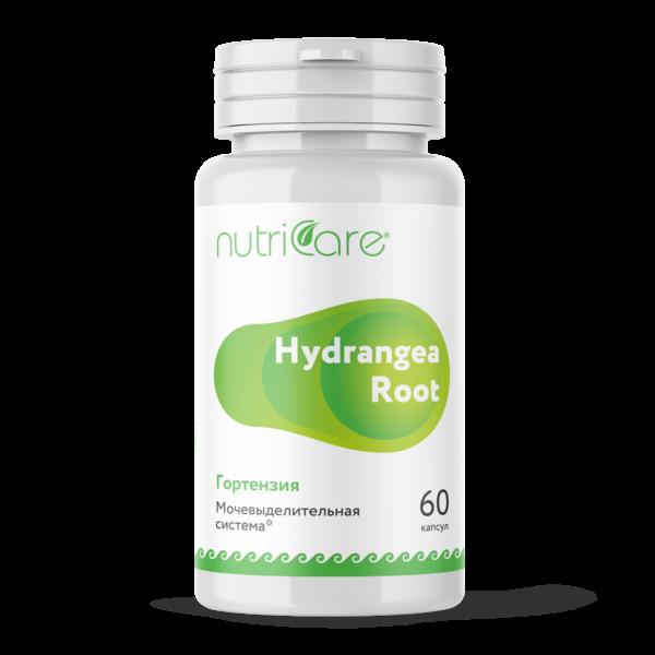 hydragea-root